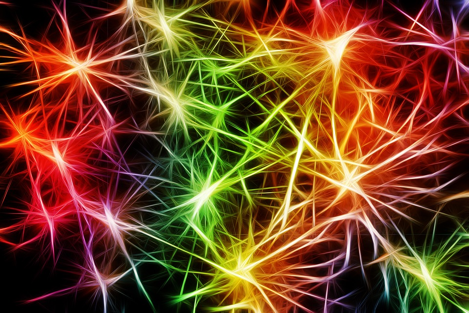 sinapsi-bg